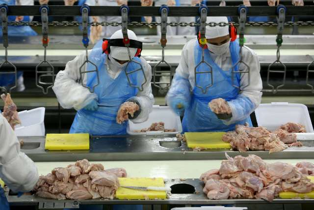 Brazil's poultry exports up 14.4%