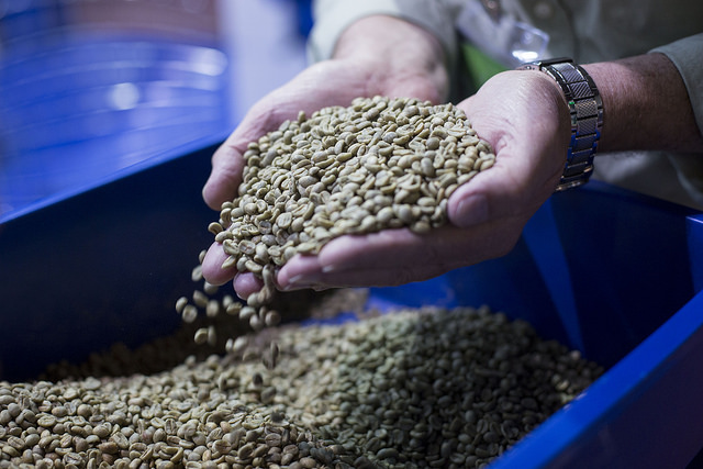 Coffee exports climbed 24% in November